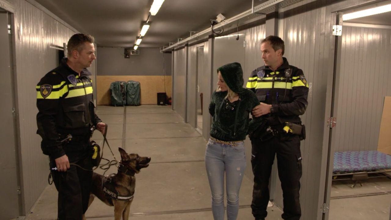Het Klokhuis - Politiehond