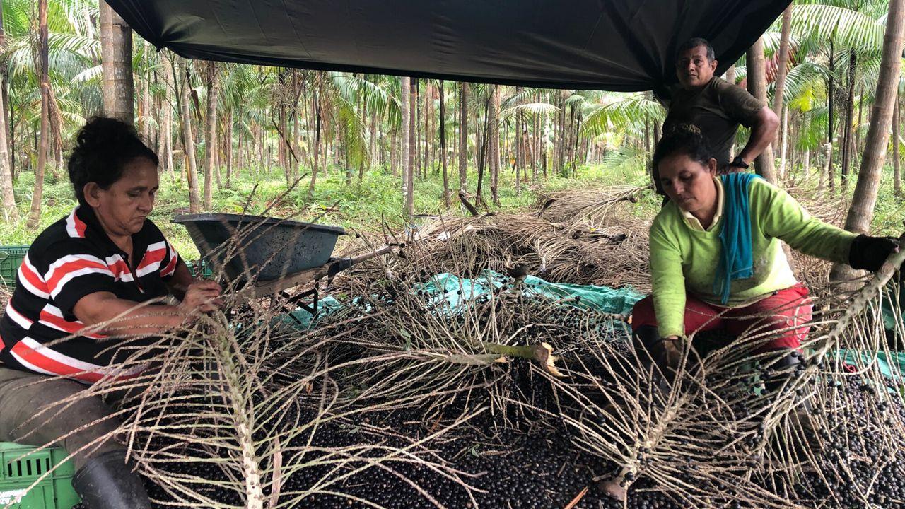 De Amazone Seizoen 1 Afl. 5 - Colombia - 'De boswachters'