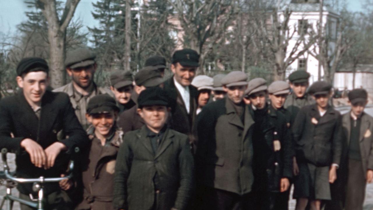 Het leven van Hitler - een blauwdruk voor dictators 1929 - 1938