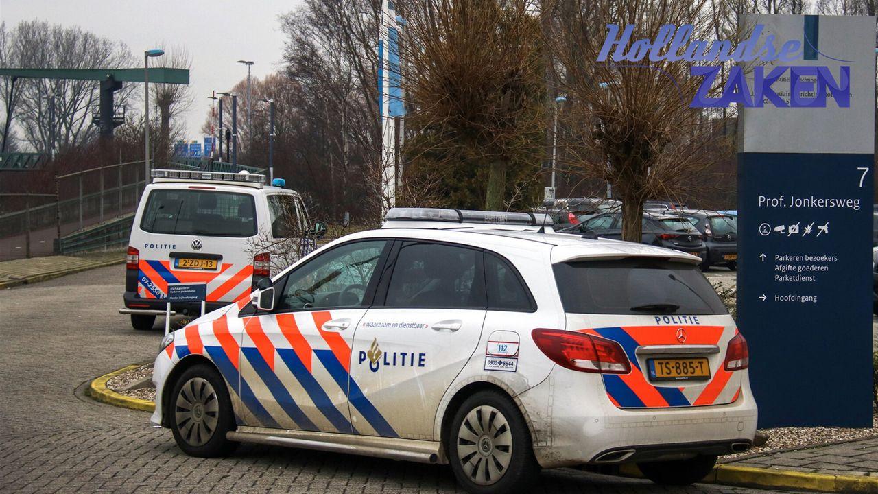 Hollandse Zaken - De Kunst Van Veerkracht