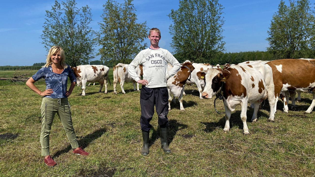 Onze boerderij De liefde van boer Willem voor de weidevogel