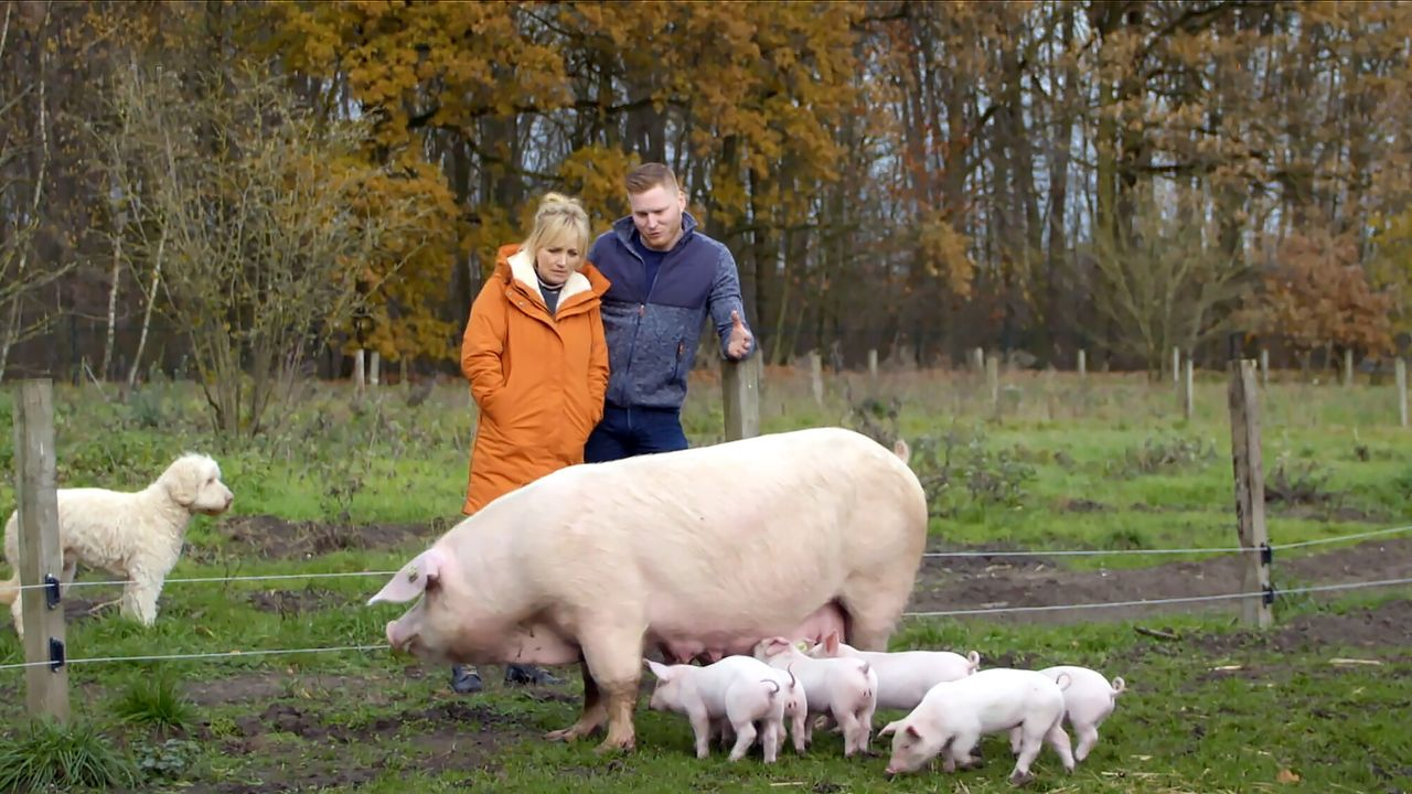 Onze boerderij Yvon bespreekt droogte met boer David
