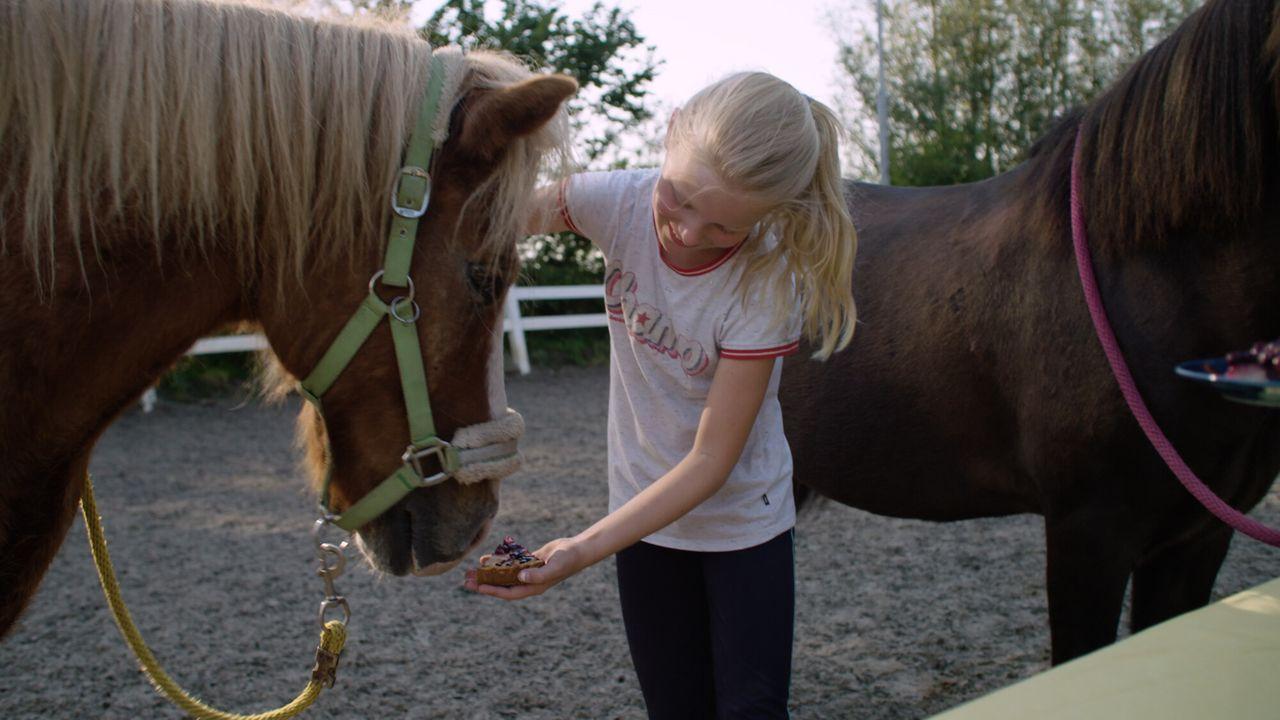 Koken Met Konijnen - Verhuizende Pony's