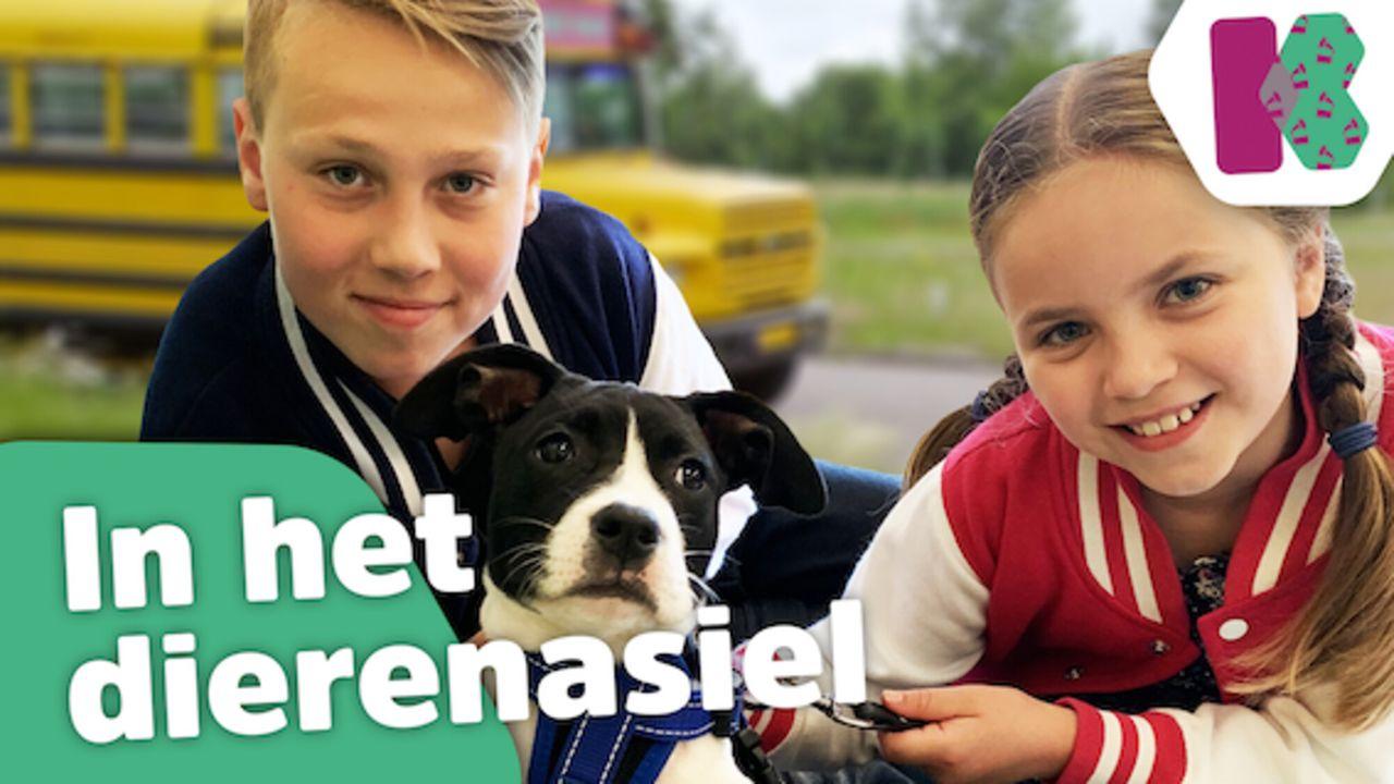 Kinderen voor Kinderen Pakt Uit In het dierenasiel