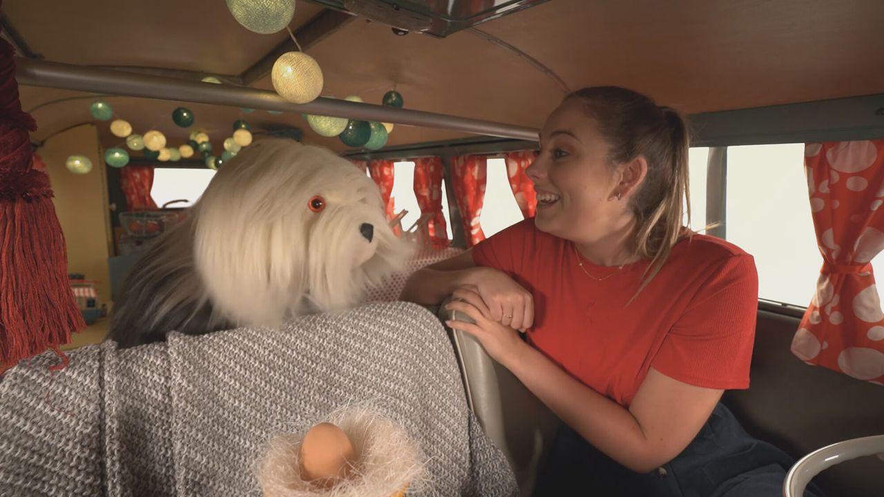 Samson & Marie Het ei