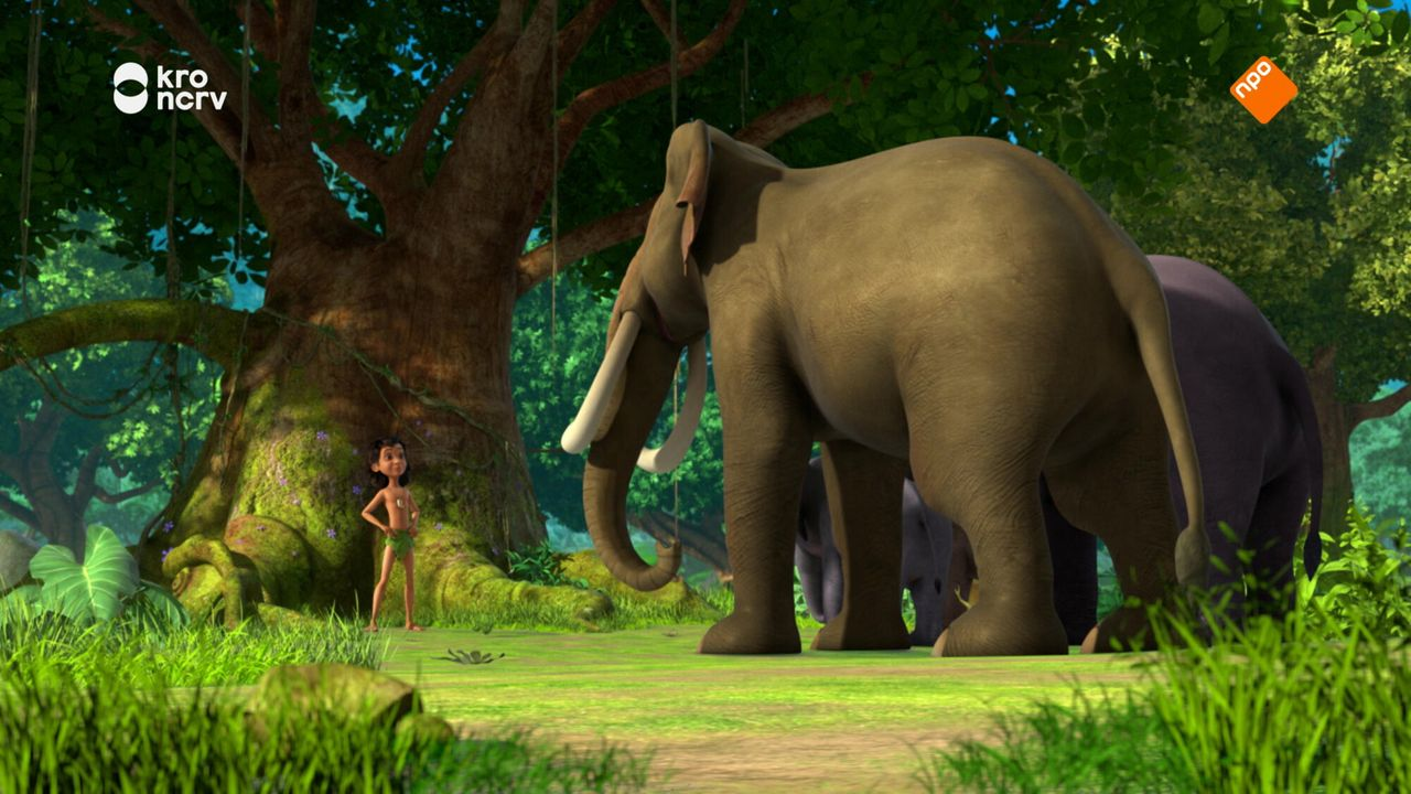 Jungle Book - Jungle Creche