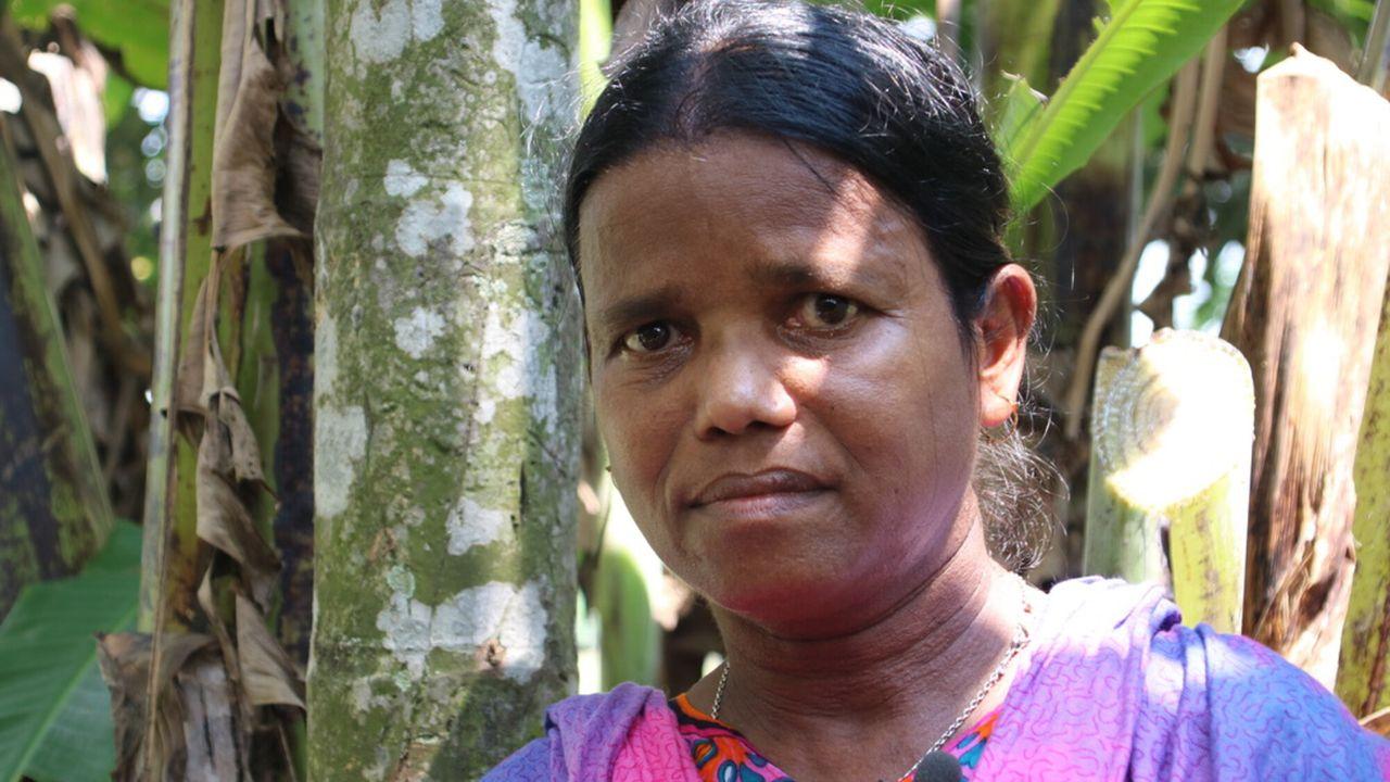 Metterdaad - Bangladesh: Crisis Op De Theeplantage