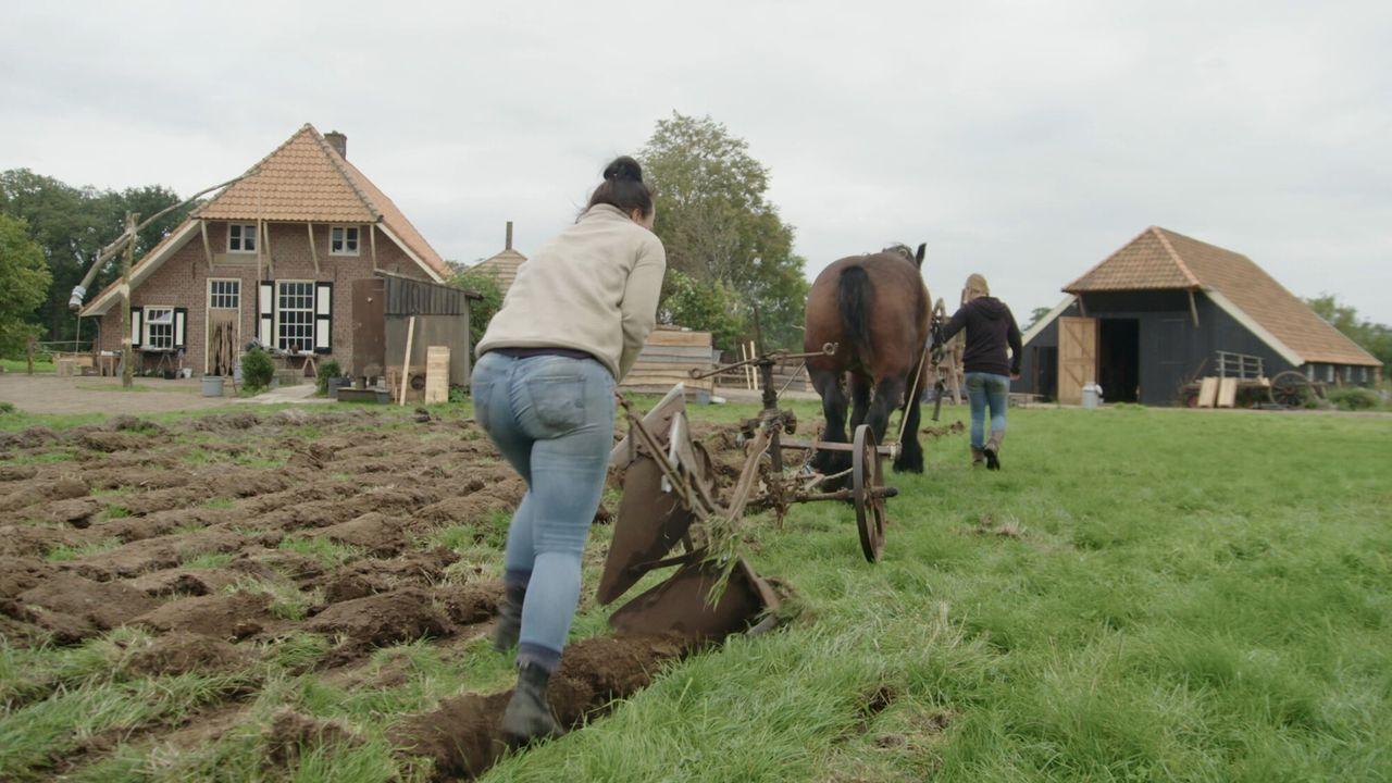 Nieuwe Boeren - Nieuwe Boeren