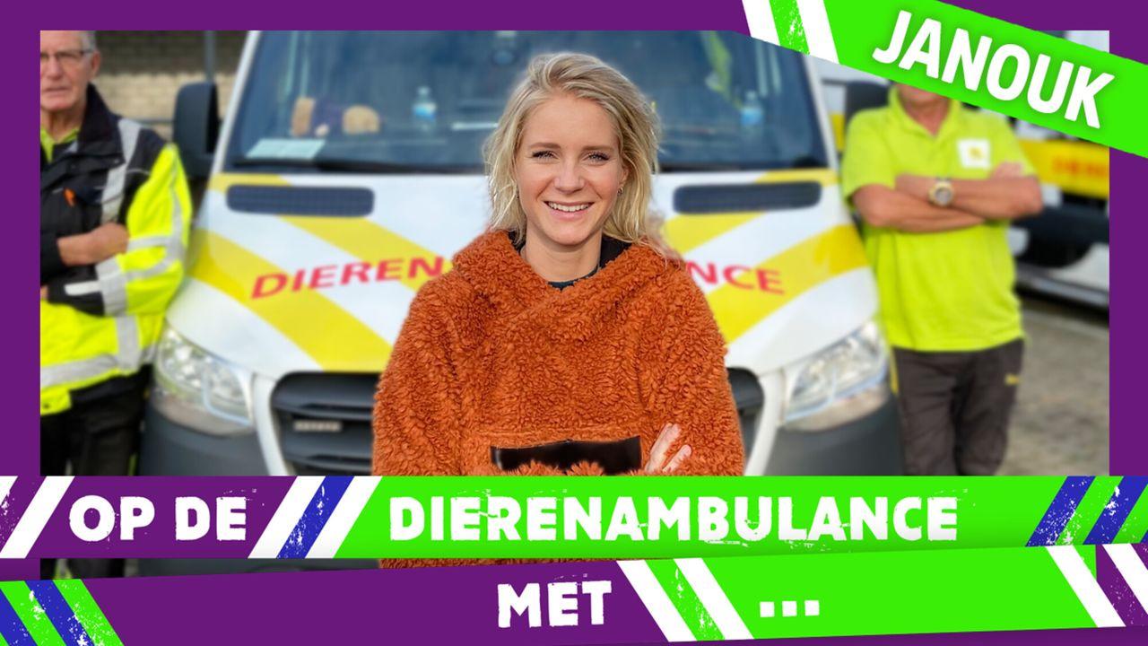 Op De Dierenambulance Met - Janouk Kelderman