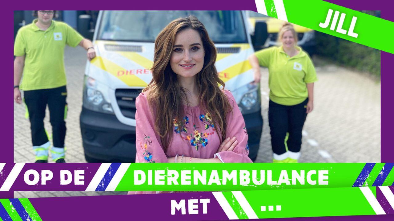 Op De Dierenambulance Met - Jill Schirnhofer