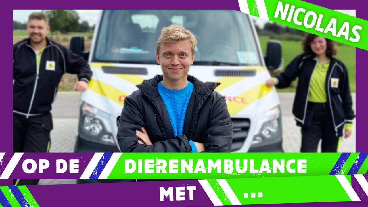 Op De Dierenambulance Met - Nicolaas Veul