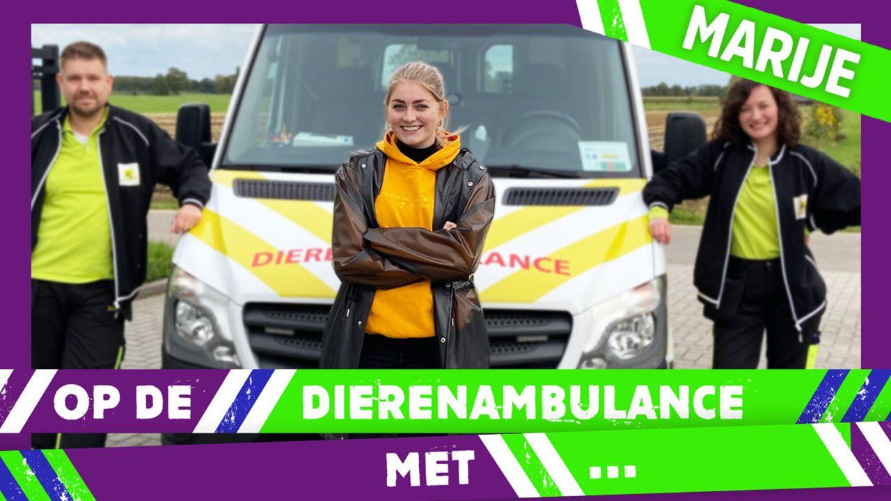 Op De Dierenambulance Met - Marije Zuurveld