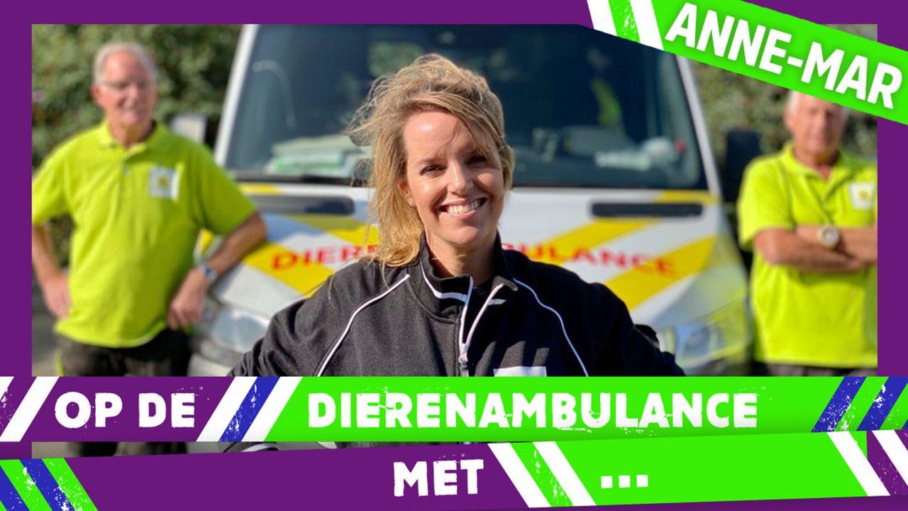 Op De Dierenambulance Met - Anne-mar Zwart