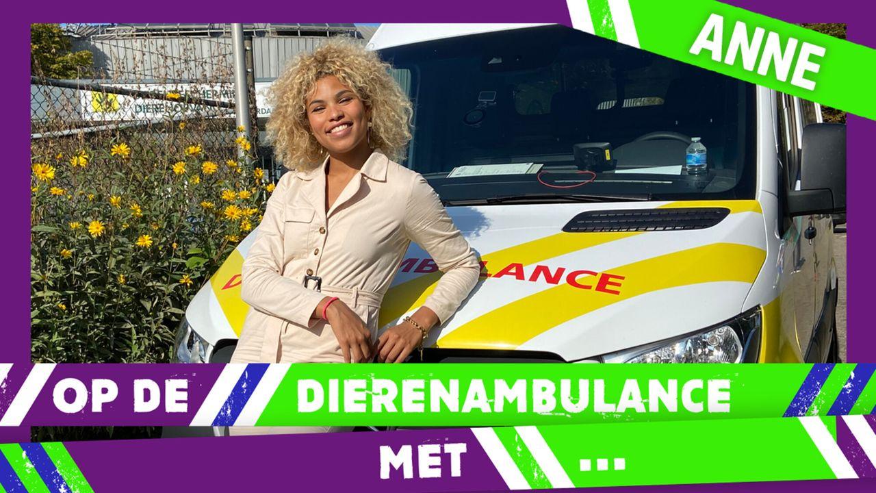 Op De Dierenambulance Met - Anne Appelo