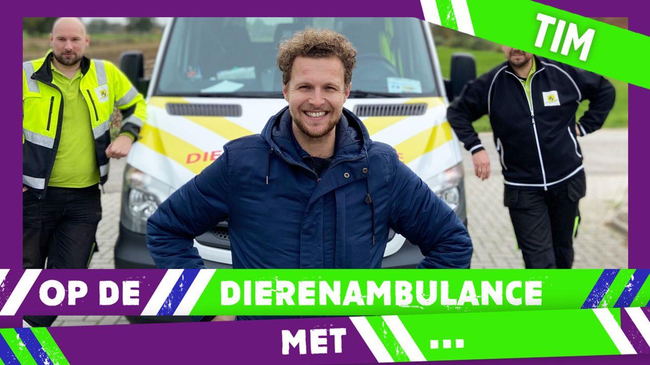 Op De Dierenambulance Met - Tim Senders