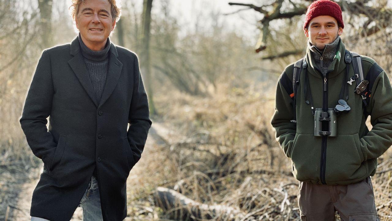 Nederland plant bomen Bomen als troost