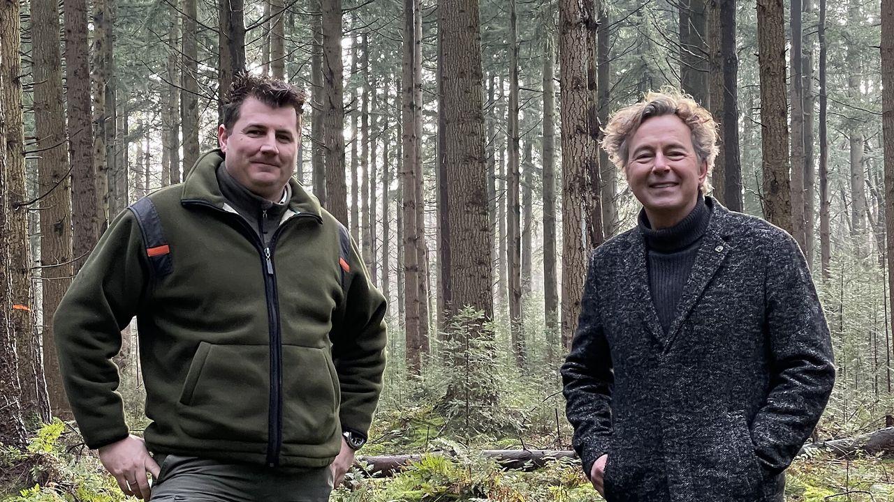 Nederland plant bomen Bos voor hout, hout voor bos