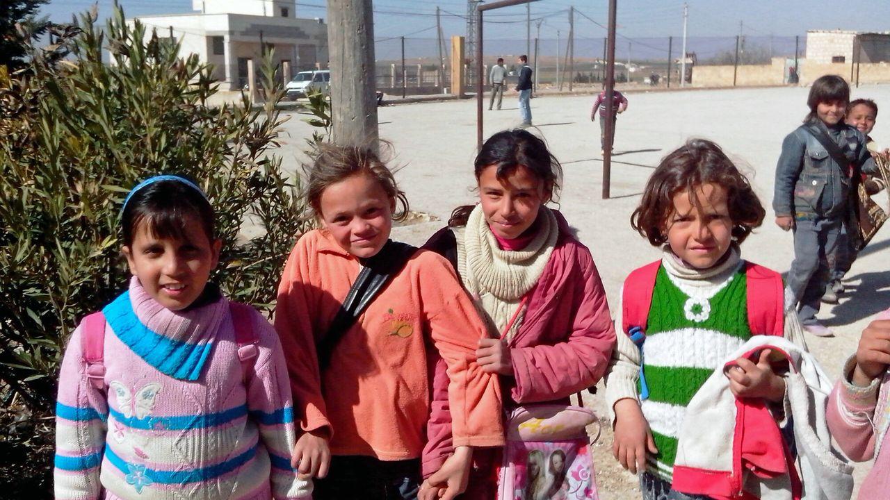 Wilde Ganzen - Syrië