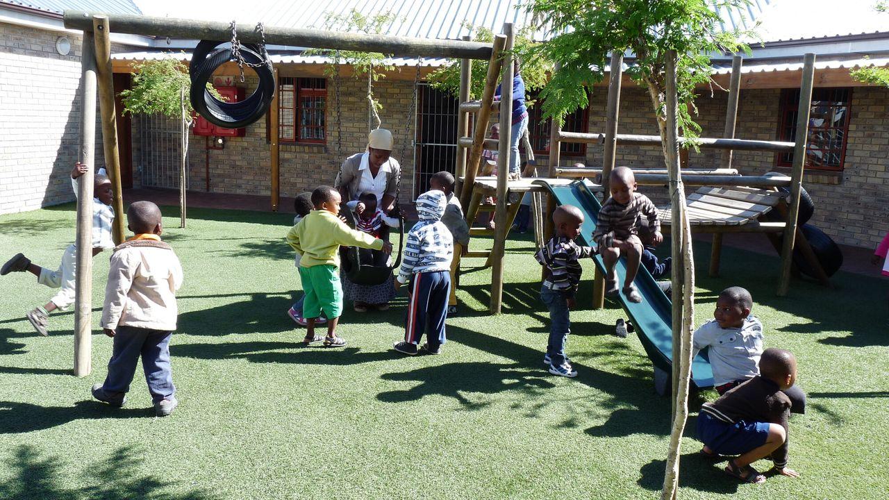 Wilde Ganzen - Zuid-afrika