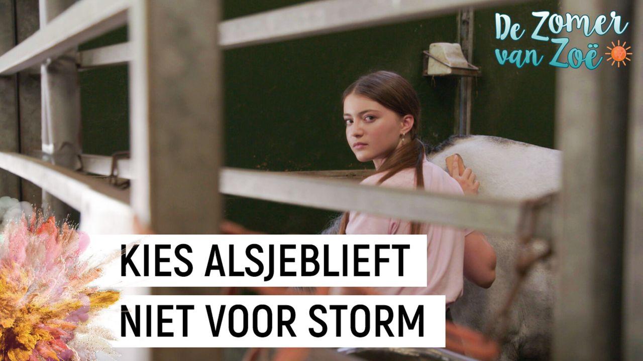 De Zomer Van Zoë - De Zomer Van Zoë
