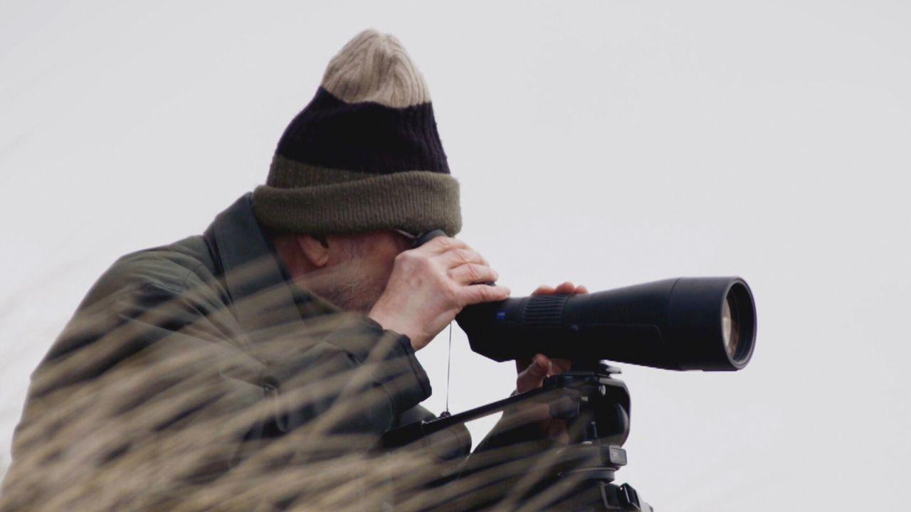 Alleen Op Een Eiland Met Hans Dorrestijn - Stella Bergsma
