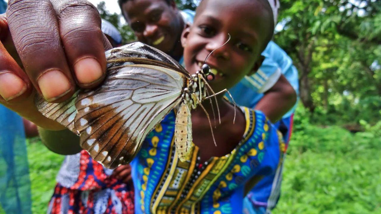 De Avonturen Van Awena En Abduli - Vlinders