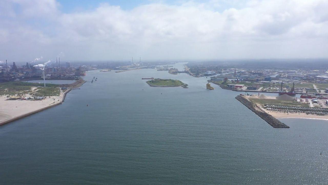 Vroege Vogels Noordzeekanaal