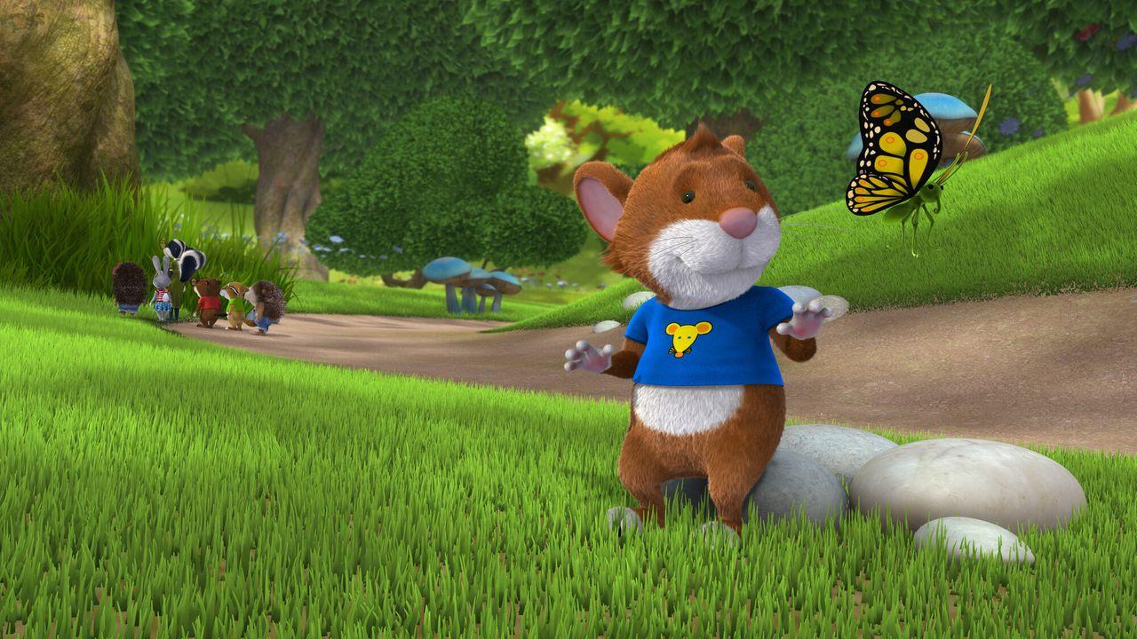 Tip De Muis - Een Huisdier Voor Tip