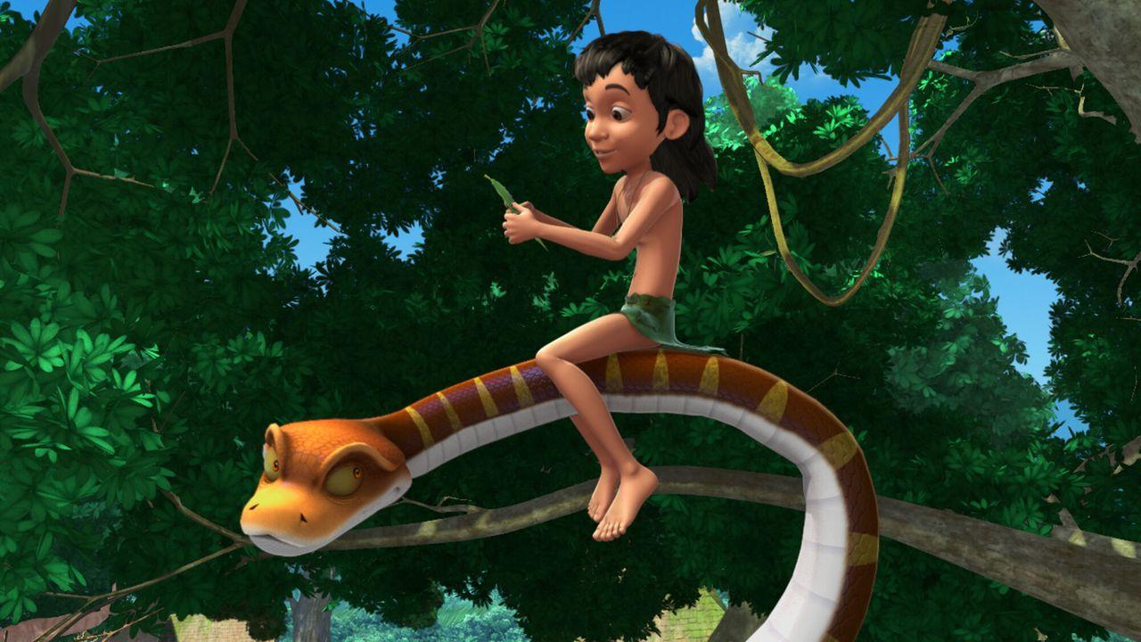 Jungle Book - De Brug