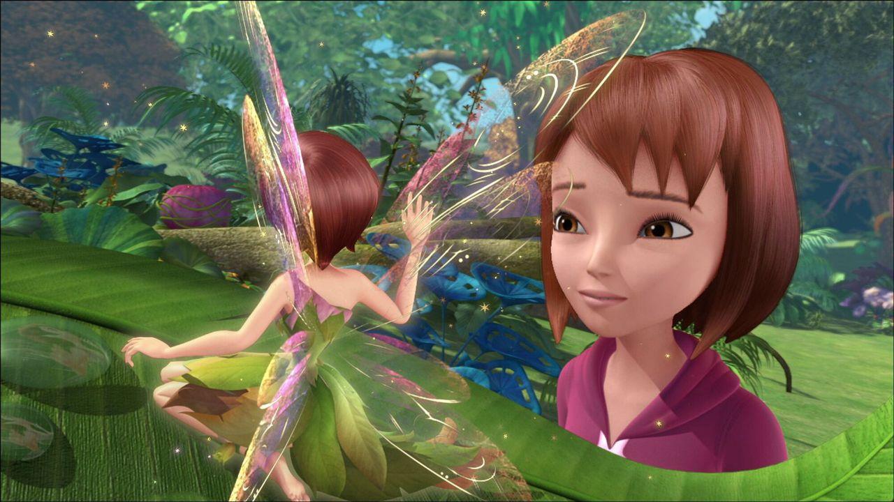 Peter Pan - De Ruziesteen