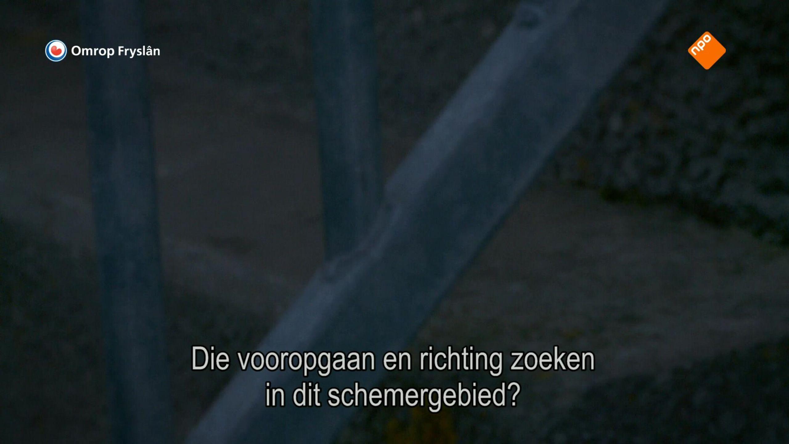 Fryslân dok